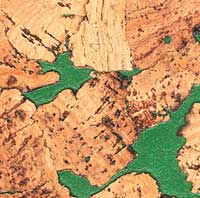 Korek ścienny MIAMI GREEN 3x300x600mm - 1,98m2